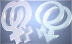 063612567_gay